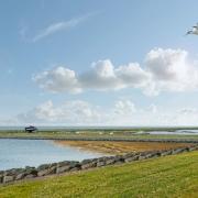 Ruimtelijke Verkenning Oostvaardersoevers Almere | bureau Nieuwe Gracht